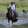 Riding couple in a river with dogs — Stock Photo
