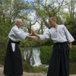 Training of Aikido — Stock Photo
