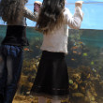 Two sisters and big aquarium — Stock Photo