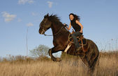 Rearing stallion and girl — Stock Photo
