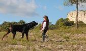 Little girl and rottweiler — Stock Photo