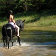 Horseback riding - Photo