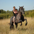 Stock Photo: Rearing stallion, teen and child