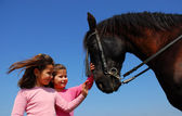 Twins and horse — Fotografia Stock