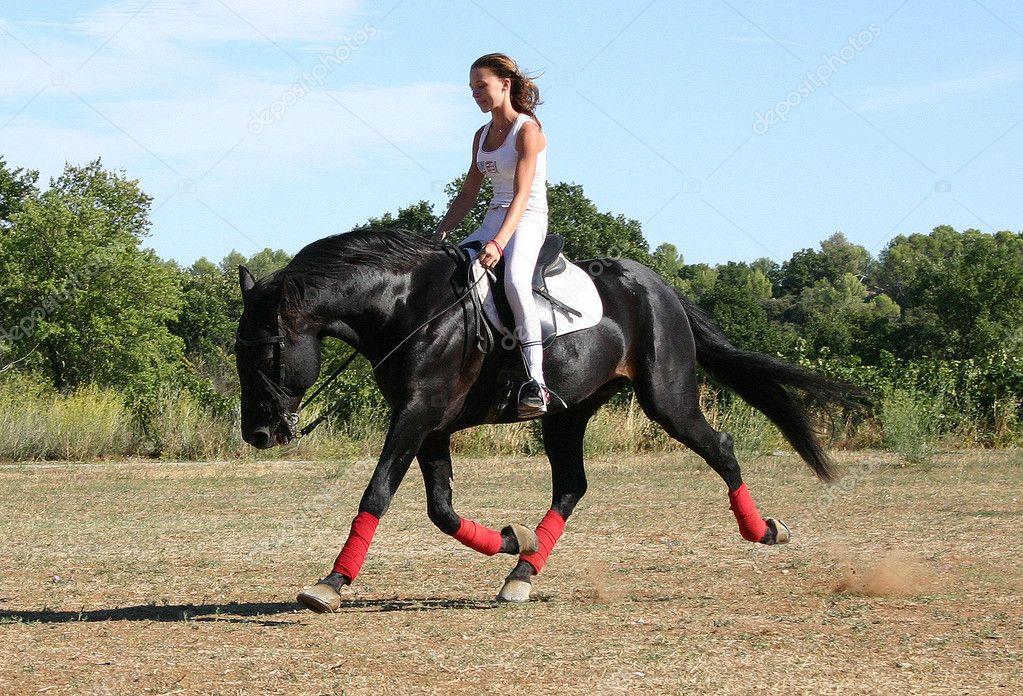 Schwarzes Pferd Reiten Schwarze Hengst Reiten