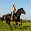 Royalty-Free Stock Photo: Horseback riding