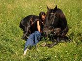 Horse lying down — Stock Photo