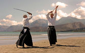 Aikido in japon — Stock Photo