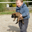 Little boy and puppy - Stockfoto