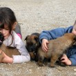 Children and puppies - Photo