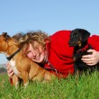 Woman and two dogs — Stock Photo