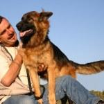 German shepherd and man — Stock Photo #2151642