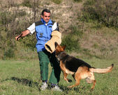 Training of police dog — Stok fotoğraf