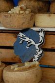 Corsica cheese — Stock Photo