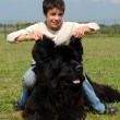 Newfoundland dog and child -  