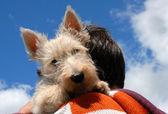 Piccola ragazza e cucciolo — Foto Stock