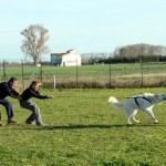 Friends and white german shepherd — Stock Photo