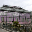 Greenhouse of museum in Paris - Stock Photo