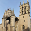 Cathedral Saint Pierre, Montpellier — Stock Photo