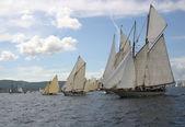 Sailing boats in regata — Stock Photo