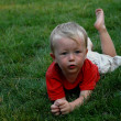 Boy in grass — Stock fotografie #2610572