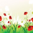 Red poppies backround — Stock vektor