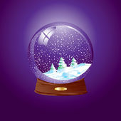 Snow dome — Stock Vector