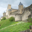 Carcassonne — Stock Photo #1928963