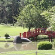 Japanese garden — Stock Photo #2065392