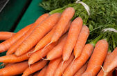 Boot of carrot — Stock Photo