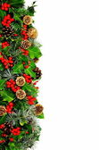 Christmas holly border vertical — Stock Photo