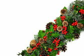 Christmas holly border diagonal — Stock Photo