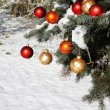 Natural Christmas tree in snow - Stock Photo