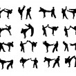Silhouettes of martial arts athletes — Stock Photo