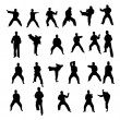 Stock Photo: Silhouettes of martial arts athletes