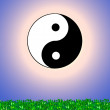 Yin & Yang sign — Stock Photo
