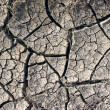 Royalty-Free Stock Photo: Cracked ground,a global warming concept