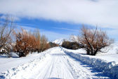 Winter road in armenia — Stock Photo
