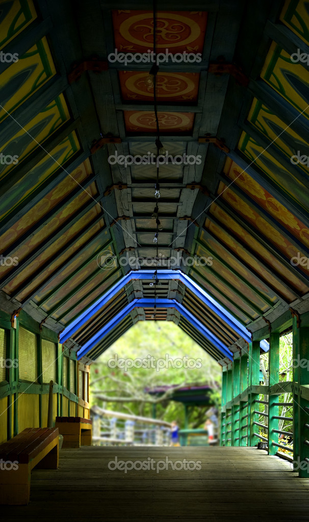 Photograph of the inside of a bridge tunnel at the Zoo in Tampa, Florida  Stock Photo #2055176