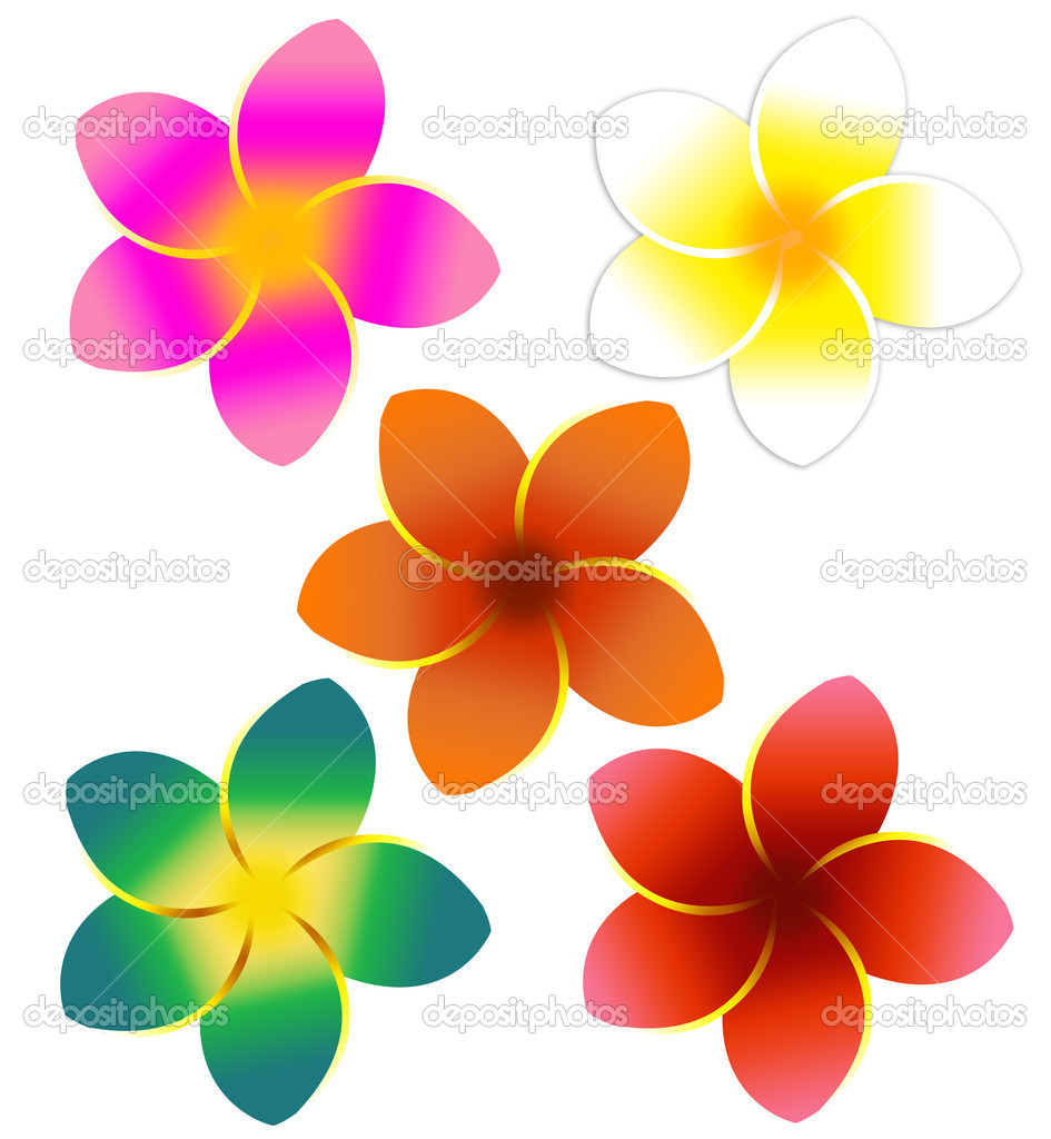 Five colorful plumeria flower designs  — Stock Photo #2121257