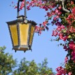 Street Lamp — Stock Photo #1951447