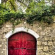 Red Garden Door — Stock Photo