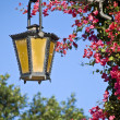 Street Lamp — Stock Photo #2256580