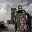Stock Photo: Knights & Armour
