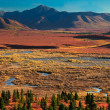 Denali National Park in autumn — Stock Photo