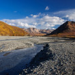 Río de toklat de Parque Nacional de Denali — Foto de Stock