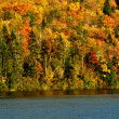 Autumn colors with lake - Stock Photo