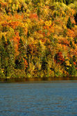 Autumn colors with lake — Stock Photo