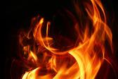 Intense heat — Stock Photo