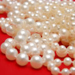 White beads on a red background — Stock Photo